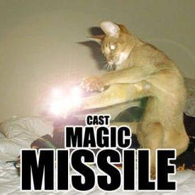 cast_magic_missile